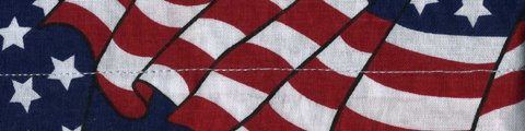 (COOLDANNA;, 100% COTTON, WAVY AMERICAN FLAG, Manufacturer: Zan Headgear, Manufacturer Part Number: DC265-AD, Stock Photo - Actual parts may vary.)