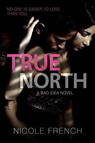 True North (Bad Idea Book 3) (English Edition)