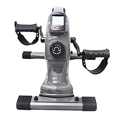 Sunny Health & Fitness SF-B0418 Magnetic Mini Exercise Bike, Gray from Sunny Distributor Inc.