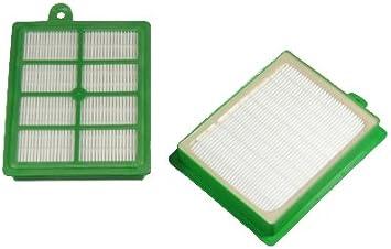 10 sacs pour aspirateur pour AEG-Electrolux Essensio zeo 5420 2 Filtre anthères