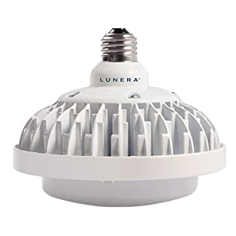 Lunera Sn V E26 Multiw 5000 G2 Susan Led Lamp Replacement