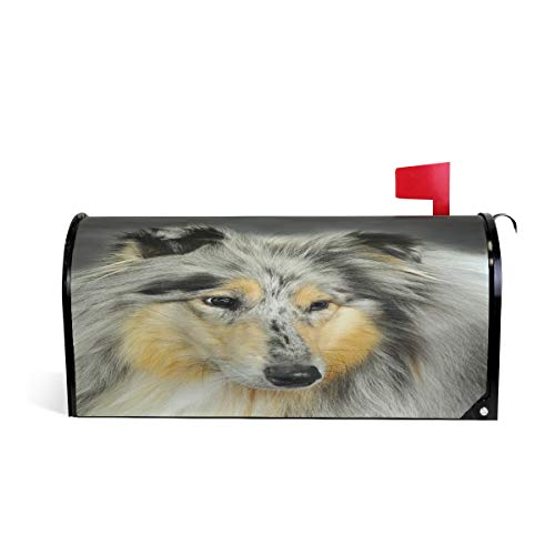 HEOEH Sheltie Art Dog Painting Magnetic Mailbox Cover Home Garden Decorations Oversized 25.5 x 20.8 inches]()