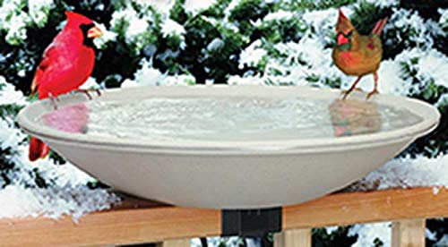 Allied Precision Industries (650) Heated Bird Bath with Mounting Bracket - Feathered Friends Glass Feeder