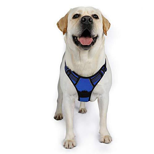 xl mesh harness - 1