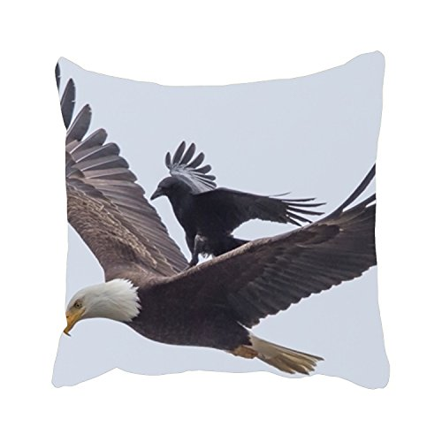 Viola North Bald Eagle And Bird Decorative Throw Pillow Cover SquarePillowcase With Hidden Zipper Decor Cushion Gift For Home Sofa Bedroom Couch Car