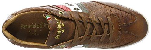 Tortoise d'Oro Romagna Low Sneaker Imola Marrone Shell Uomo Pantofola ngfx0wn