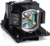 Replacement Lamp 2000 Hr IN5300 Series Projectors