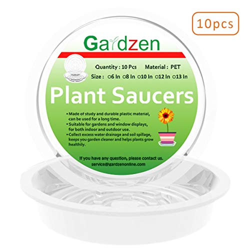 - Gardzen Heavy Duty Clear Plastic Plant Saucers, Flower Pot Tray - Excellent for Indoor & Outdoor Plants (6-Inch, 10-Pack)