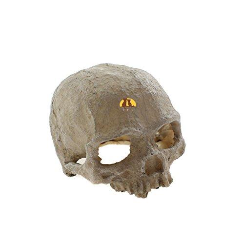 Emours-Reptile-Hideout-Skull-Vivarium-Aquarium-Fish-Tank-Resin-Ornament-Cave-Decoration
