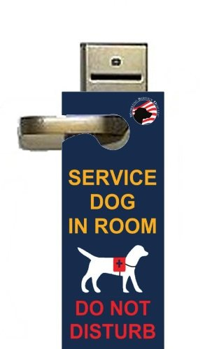 service dog in room - 4