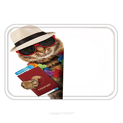 Flannel Microfiber Non-slip Rubber Backing Soft Absorbent Doormat Mat Rug Carpet Funny Cat With Passport And Airline Ticket Isolated On White Background It Is Going On Vacation 302690624 for ()