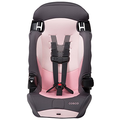 41ZE USo7DL - Cosco Finale DX 2-in-1 Booster Car Seat, Sweet Berry