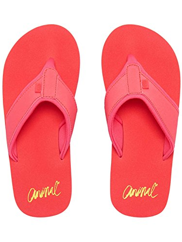Animal Swish Block Womens Sandals Paradise Pink qdkY35