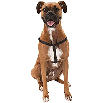 Amazon.com : Majestic Pet Best Step In Dog Harness-Perfect For All