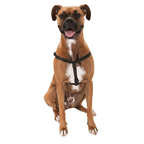 Majestic Pet Best Step In Dog Harness-Perfect For All Sized Dogs Small Medium & Large Heavy Duty Material- Adjustable For Training & Walking-15X25 Black