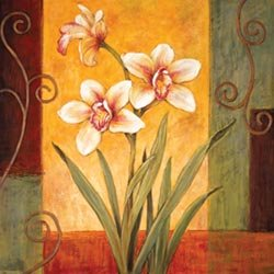"""Marian Heath - PDI Ready-To-Paint Gallery Collection Canvas Kit (12"""" X 12"""") White Orchid"""
