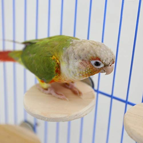 Diy Wooden - Pet Bird Small Animals Springboard Toys Anti Bite Circle Cage - Lava Habitat Nesting Drinking Potty Carrier Jaula Book Nail Cheese Onesie Seeds Sprays Round Dish Fence Rice Natural -  VH-ACCESSORIES