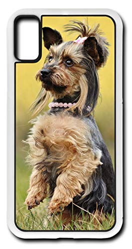 (iPhone Xs Case Yorkshire Terrier Dog Yorkie Nature Customizable by TYD Designs in White Rubber)