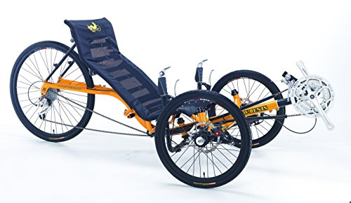 Artifice Adult Recumbent Tricycle (Recumbent Trike)