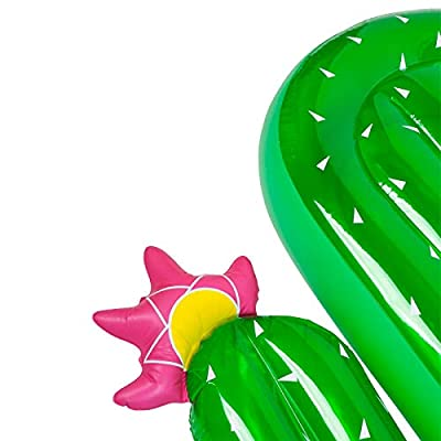 SunnyLIFE Luxury Adult Inflatable Pool Float Lie Down Beach Toy - Cactus: Garden & Outdoor