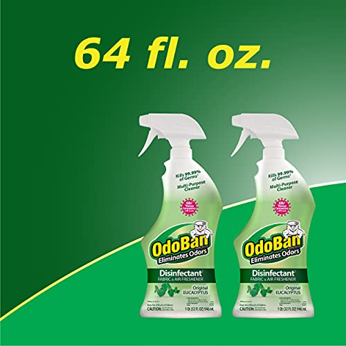 OdoBan Ready-to-Use Odor Eliminator & Laundry Refresher, 32 Fl Oz (Pack of 2), Eucalyptus