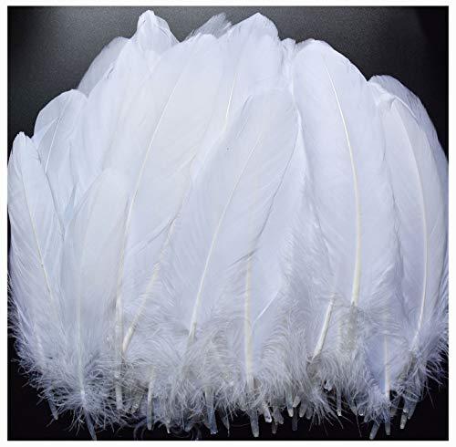 Large Feather - TommoT 100pcs 6-8 Inch Large Feathers for Crafts and Art Home Decor - White