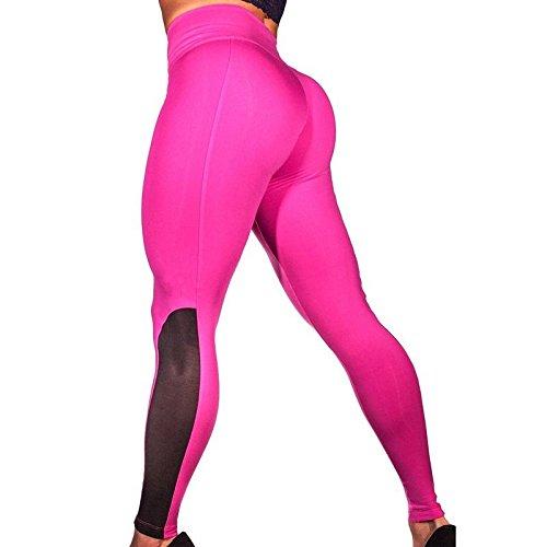 Amazon.com : MAYUAN520 Mesh Patchwork Yoga Pants Women ...