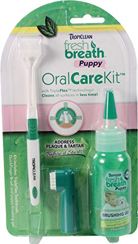 Tropiclean Fresh Breath Dental Care Kit For Small Dogs, 2 oz