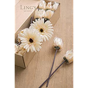 Ling's moment Artificial Gerbera Daisy Flowers Pack of 24 Cream Daisies Flower for DIY Wedding Bouquets Centerpieces Arrangements Home Decor 2
