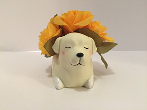 ANIMAL FUN - SLEEPING YELLOW LABRADOR - ORANGE ROSES by Peters Partners Design