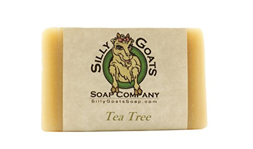 Tea Tree - Handmade, Goat Milk Soap