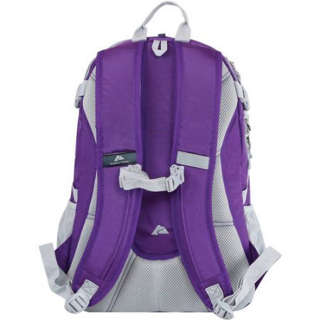 Amazon.com: Ozark Trail 35L Choteau Daypack Backpack purple/grey: Computers & Accessories