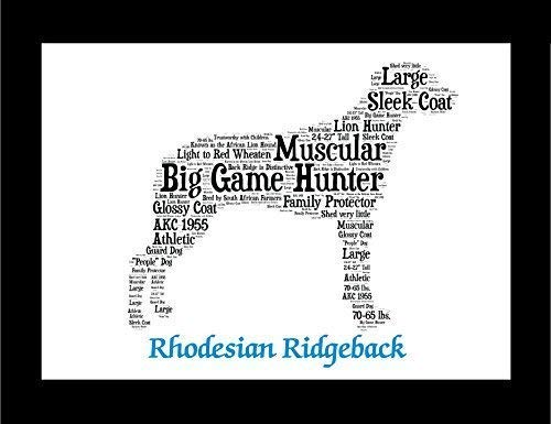 Rhodesian Ridgeback Dog Wall Art Print - Personalized Pet Name - Gift for Her or Him - 11x14 matted - Ships 1 - Ridgeback Pictures Rhodesian Dog