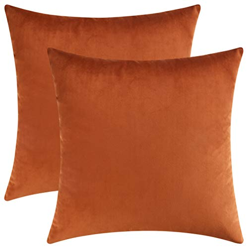 Mixhug Set of 2 Cozy Velvet Square Decorative Throw Pillow Covers for Couch and Bed, Burnt Orange, 18 x 18 Inches ()