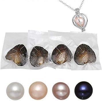 Ostras redondas reales con perlas de perlas de concha interior de 7 a 8 mm, 4 unidades con collar de perlas para regalo para mujeres