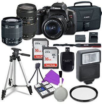 Canon EOS Rebel T6i 24.2 MP EF-S Digital SLR Camera with Canon EF-S 18-55mm f/3.5-5.6 STM Zoom Lens + Tamron 70-300mm Lens + 2pc - 16GB Class 10 Memory Cards ()
