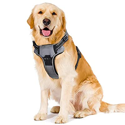 Petacc Outdoor Dog Harness Adjustable Pet Harness Reflective Vest with Postpositive D-Ring Buckle for Dogs, Gray, L