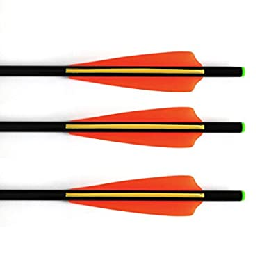 12pk Fiberglass Arrows Crossbow Bolts with ABS Green Flat Nock and 100 Grain Screw-In Points 16 Inch