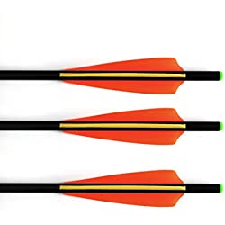 12pk Fiberglass Arrows Crossbow Bolts with ABS Green Flat Nock and 100 Grain Screw-In Points 16 Inch (24 Pack)