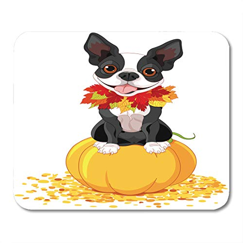 (Emvency Mouse Pads Dog Boston Terrier Sits on Pumpkin Halloween Cartoon Costume Animals Mouse pad 9.5