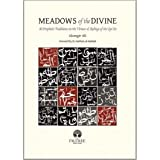 img - for Meadows of the Divine: 40 Prophetic Traditions on the Virtues & Ruling of the Qur'an book / textbook / text book