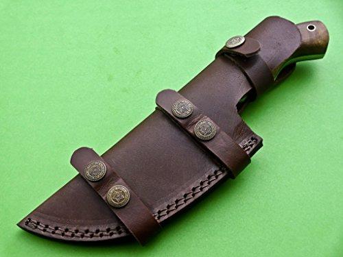 Poshland Knives TRH-001, Custom Handmade Damascus Steel Tracker Knife - Exotic Wood Handle