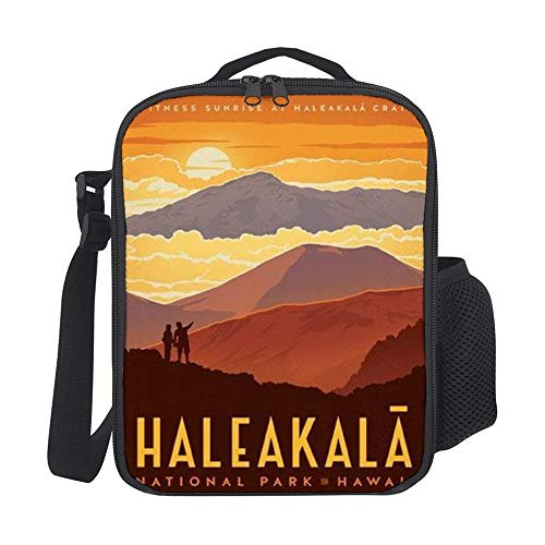 Haleakala Crater Haleakala National Park Maui Hawaii Personality Insulated Lunch Tote Bag Reusable Large Cooler Bag Travel Handbag Picnic Tote Bag with with Zipper