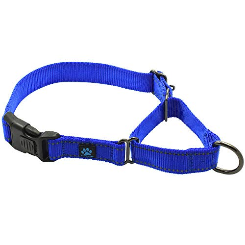 - Max and Neo Nylon Martingale Collar - We Donate a Collar to a Dog Rescue for Every Collar Sold (Small, Blue)
