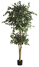 Nearly Natural 5268 Double Ball Ficus Silk Tree, 6-Feet, Green
