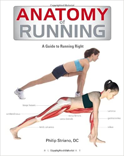 Anatomy of Running: A Guide to Running Right