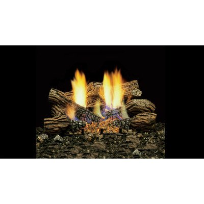 TPB24PV Triple Play 24 Liquid Propane Burner System with 36000 BTUs Full Yellow Flame Deep Ember Bed Glowing Logs and Millivolt Control (Triple Burner Play System)