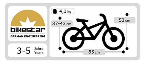 BIKESTAR-Premium-305cm-12-pulgadas-Bicicleta-sin-pedales-para-las-princesas-mas-pequeas-a-partir-de-los-3-aos–Edicin-de-madera-natural–Blanco–Diseo-para-princesas