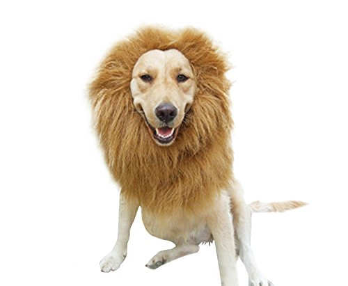 Lion Great Dane Costume (Lion Mane Costume and Big Dog Lion Mane Wig - Funny Cute Large Size Dog Costumes - Pet Cosplay Clothes For Birthday Party, Halloween, Christmas, New Year)