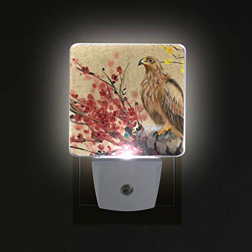 Mr.XZY Chinese Style Painting Classic Theme LED Night Light Blooming Flowers Eagle On Branch Set of 2 Night Lamp for Bedroom, Living Room, Hallway, Holiday Party Decoration ()